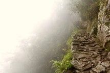 fog on a mountain cliff with pathway