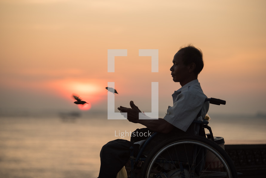 man in a wheelchair releasing birds