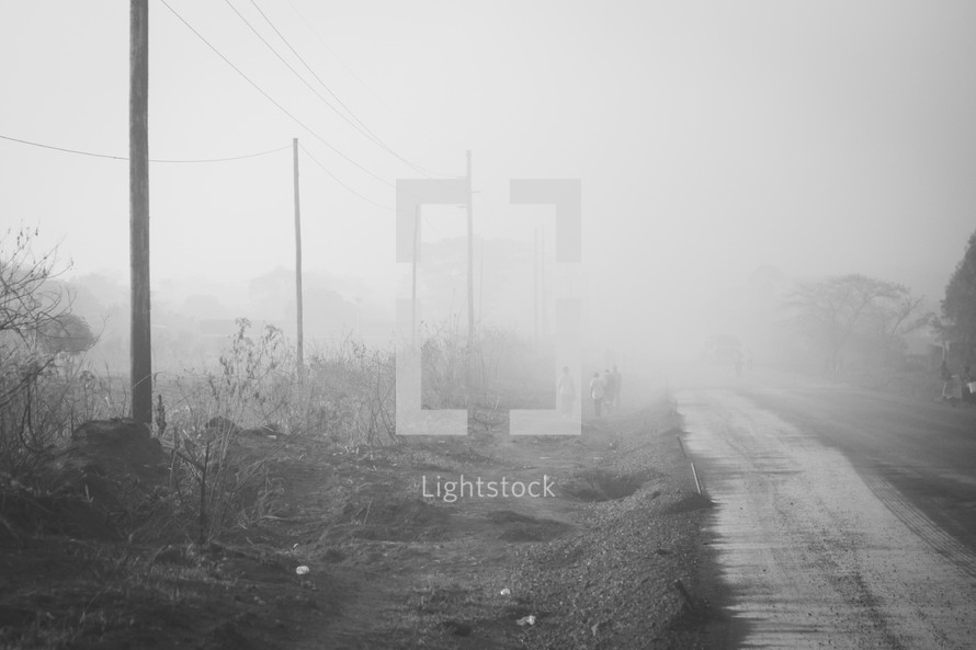 fog and a dirt road