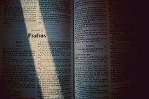 sunlight on the pages of a Bible opened to Psalms