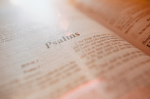 Bible turned to Psalms