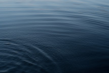 Ripples over lake
