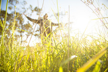 man standing outdoors in tall grass with outstretched arms
