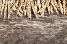 wheat grains placed on wood background