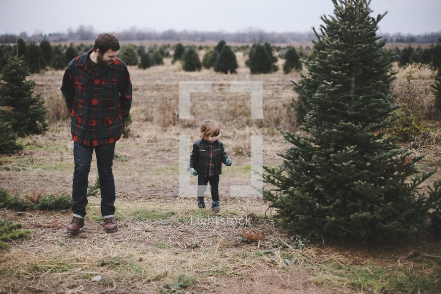 father, son, man, outdoors, boy, Christmas tree lot, Christmas, Christmas trees