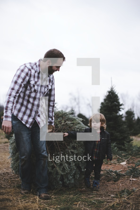 father and son picking out a Christmas tree