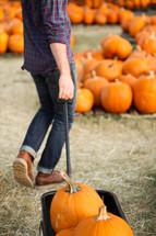 a man pulling a wagon full of pumpkins