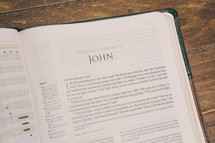 Bible opened to John
