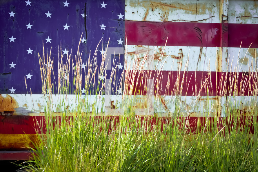 American Flag painted on a shed and tall grass