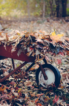 a wheelbarrow full of fall leaves