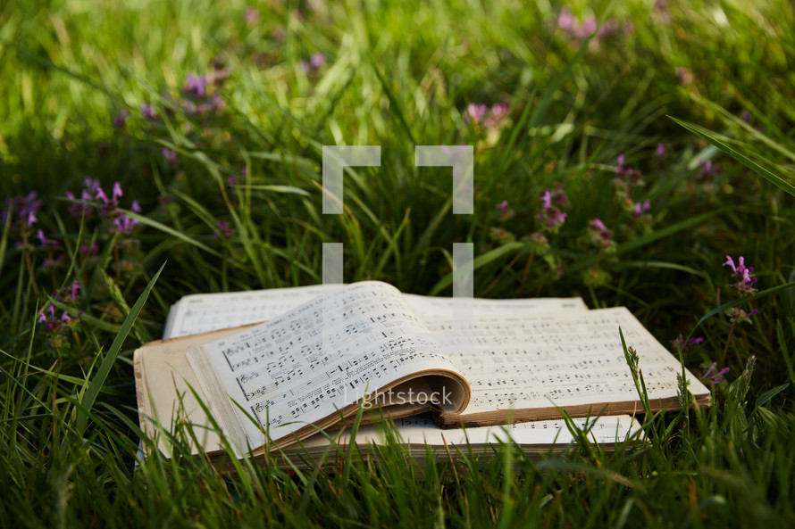 sheet music in the grass