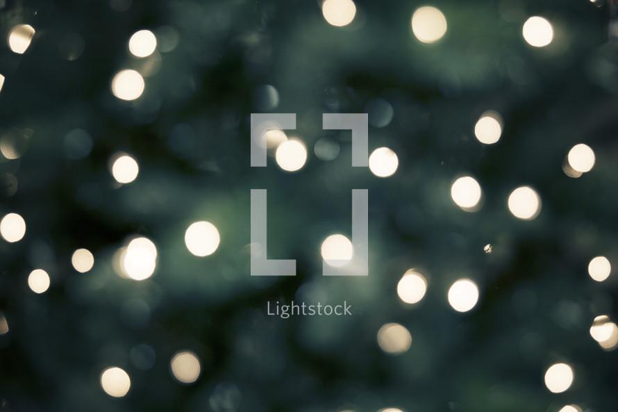 bokeh white lights on a Christmas tree