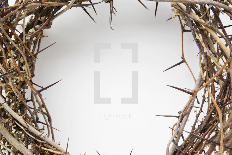 a crown of thorns with copyspace in the middle.