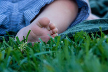 infant foot in the grass