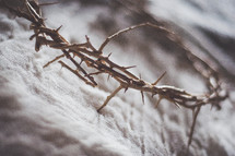 crown of thorns on gray cloth