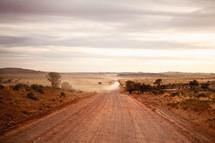 rural dirt road through a desert