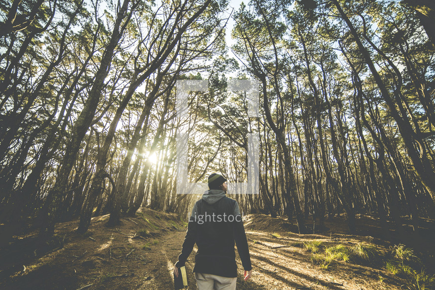 a man walking carrying a Bible in a forest