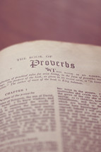 Bible open to the book of Proverbs.