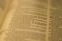 pages of a Bible background