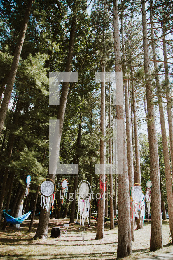 dream catchers and hammocks under trees in a forest