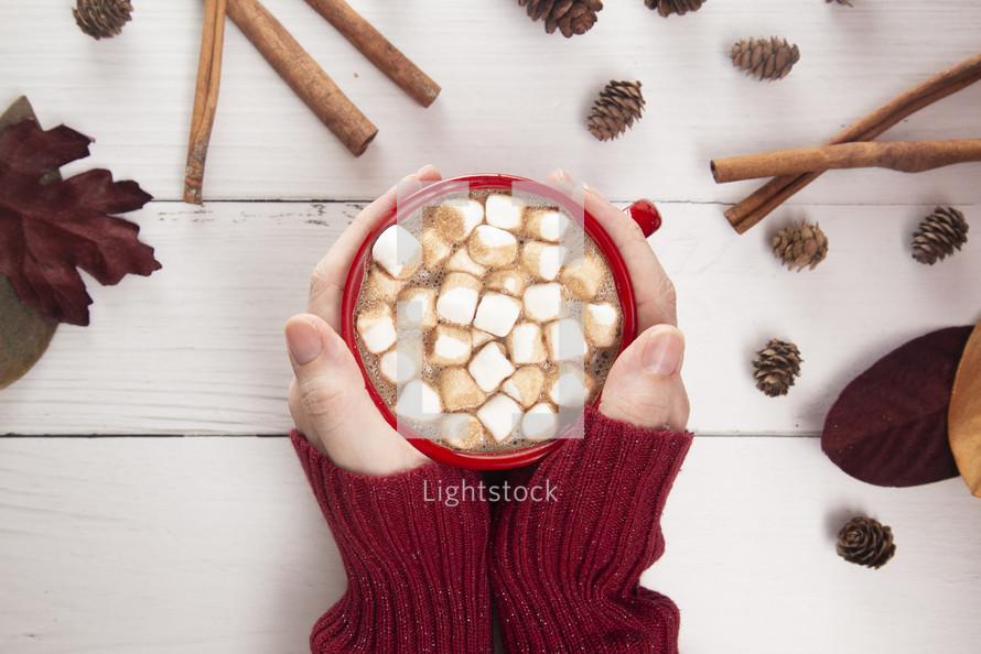 woman holding a mug of hot cocoa