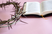 Bible and crown of thorns on a pink background