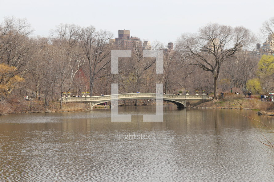 bridge over Central Park lake