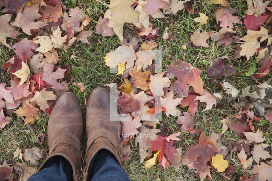 shoes and leaves in the grass
