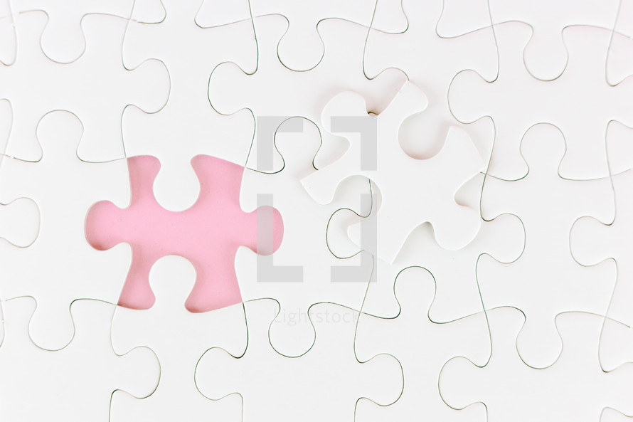 missing puzzle piece found
