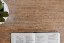 open Bible on a wooden desk