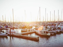 Boats docked at a marina