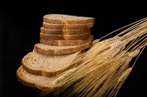 wheat grains and bread slices