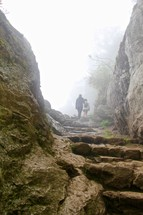 Stone pathway cloaked in mist