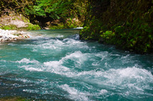 A swift blue river through a green forest.