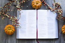 fall decorations, berries and pumpkins, and an open Bible