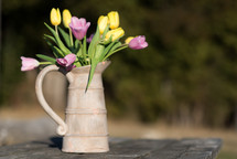 tulips in a pitcher