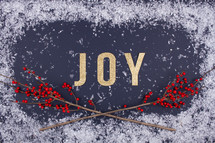 word joy and red berries with snow background