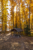 picnic area and fall forest