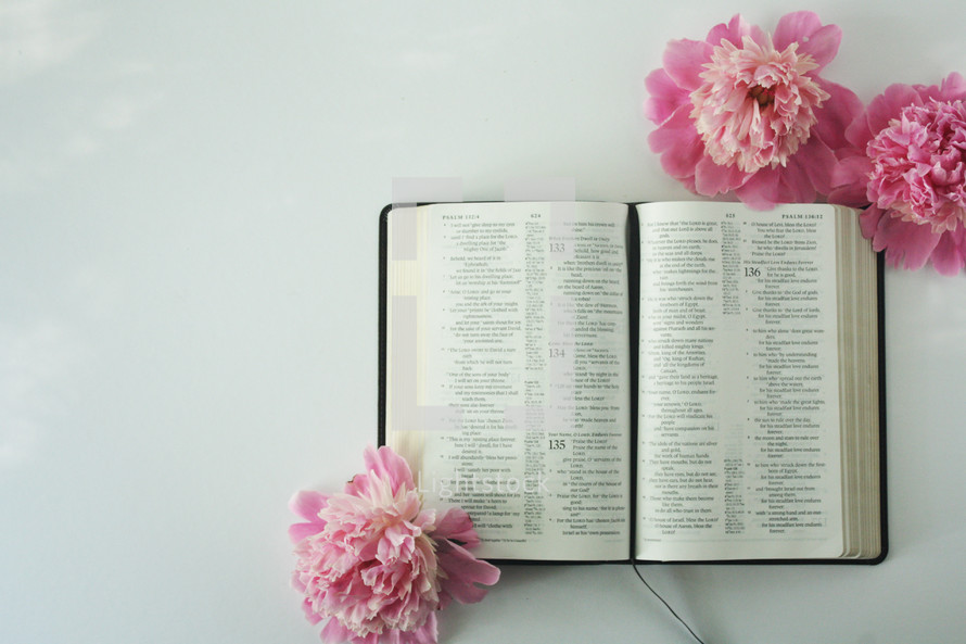pink flowers and open Bible