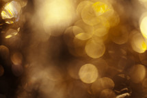 golden abstract bokeh lights background