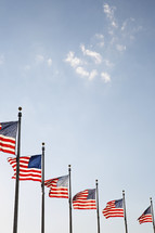 row of American flags in flag poles