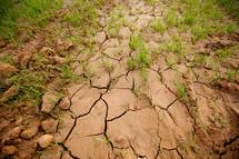 cracks in clay soil