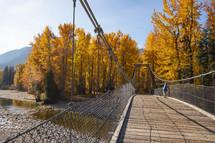 bridge and fall foliage