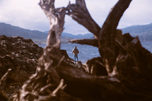 driftwood on a shore and man standing by water