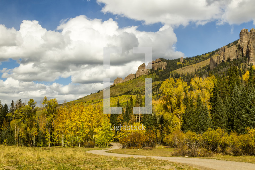 winding path through a yellow fall forest