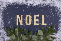 word noel with sow border