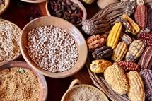corn and beans in Peru