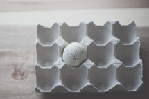 a Speckled egg in an egg carton