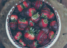 chocolate covered strawberries in a bowl