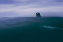 man in the ocean